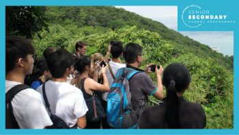 Permalink to: Beyond the Concrete Jungle: Exploring Nature and Biodiversity